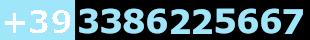 +393386225667